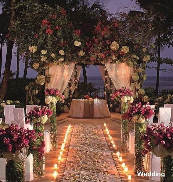 Casamento jardim36 - Decoração de Jardim - Inspirações